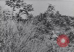 Image of German troops Italy, 1944, second 5 stock footage video 65675075256