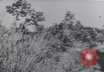 Image of German troops Italy, 1944, second 7 stock footage video 65675075256