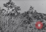 Image of German troops Italy, 1944, second 8 stock footage video 65675075256