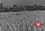 Image of German troops Italy, 1944, second 6 stock footage video 65675075257