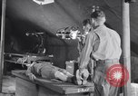 Image of evacuation hospital European Theater, 1945, second 6 stock footage video 65675075314