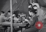 Image of evacuation hospital European Theater, 1945, second 18 stock footage video 65675075316