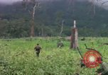 Image of Richard E Pegram Vietnam, 1964, second 2 stock footage video 65675075486
