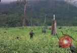 Image of Richard E Pegram Vietnam, 1964, second 3 stock footage video 65675075486