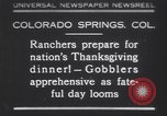 Image of gobbler turkeys Colorado Springs Colorado USA, 1930, second 1 stock footage video 65675075494