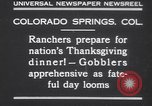 Image of gobbler turkeys Colorado Springs Colorado USA, 1930, second 2 stock footage video 65675075494