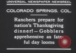Image of gobbler turkeys Colorado Springs Colorado USA, 1930, second 4 stock footage video 65675075494