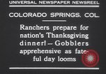 Image of gobbler turkeys Colorado Springs Colorado USA, 1930, second 6 stock footage video 65675075494