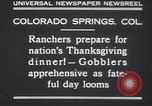 Image of gobbler turkeys Colorado Springs Colorado USA, 1930, second 7 stock footage video 65675075494