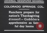 Image of gobbler turkeys Colorado Springs Colorado USA, 1930, second 8 stock footage video 65675075494