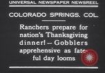 Image of gobbler turkeys Colorado Springs Colorado USA, 1930, second 9 stock footage video 65675075494