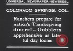 Image of gobbler turkeys Colorado Springs Colorado USA, 1930, second 10 stock footage video 65675075494