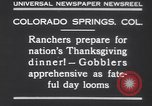 Image of gobbler turkeys Colorado Springs Colorado USA, 1930, second 12 stock footage video 65675075494