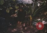 Image of United States pilot Vietnam, 1967, second 3 stock footage video 65675075565