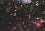 Image of United States pilot Vietnam, 1967, second 9 stock footage video 65675075565