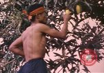 Image of Vietnamese man Vietnam, 1967, second 12 stock footage video 65675075568