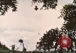 Image of 20th Helicopter Squadron paratroopers Vietnam, 1962, second 7 stock footage video 65675075619