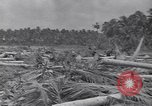 Image of US 27th Infantry Division Makin Island Kiribati Islands, 1943, second 3 stock footage video 65675076186