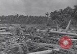 Image of US 27th Infantry Division Makin Island Kiribati Islands, 1943, second 5 stock footage video 65675076186