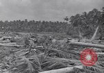 Image of US 27th Infantry Division Makin Island Kiribati Islands, 1943, second 7 stock footage video 65675076186