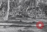 Image of US 27th Infantry Division Makin Island Kiribati Islands, 1943, second 11 stock footage video 65675076186