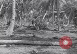 Image of US 27th Infantry Division Makin Island Kiribati Islands, 1943, second 12 stock footage video 65675076186