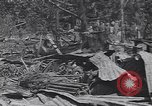 Image of 27th Infantry Division on Makin Island World War 2 Makin Island Butaritari Islands, 1943, second 1 stock footage video 65675076188