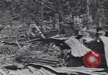Image of 27th Infantry Division on Makin Island World War 2 Makin Island Butaritari Islands, 1943, second 2 stock footage video 65675076188