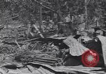 Image of 27th Infantry Division on Makin Island World War 2 Makin Island Butaritari Islands, 1943, second 3 stock footage video 65675076188