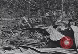 Image of 27th Infantry Division on Makin Island World War 2 Makin Island Butaritari Islands, 1943, second 4 stock footage video 65675076188