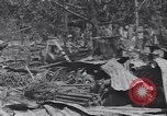 Image of 27th Infantry Division on Makin Island World War 2 Makin Island Butaritari Islands, 1943, second 5 stock footage video 65675076188