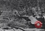 Image of 27th Infantry Division on Makin Island World War 2 Makin Island Butaritari Islands, 1943, second 6 stock footage video 65675076188