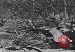 Image of 27th Infantry Division on Makin Island World War 2 Makin Island Butaritari Islands, 1943, second 10 stock footage video 65675076188