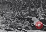 Image of 27th Infantry Division on Makin Island World War 2 Makin Island Butaritari Islands, 1943, second 11 stock footage video 65675076188