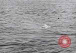 Image of submarine periscope United States USA, 1948, second 8 stock footage video 65675076222