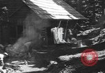 Image of damage from snow slide Mount Baker Washington USA, 1939, second 11 stock footage video 65675076322