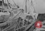Image of American trawlers Boston Massachusetts USA, 1954, second 5 stock footage video 65675076332