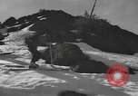 Image of skiing United States USA, 1942, second 10 stock footage video 65675076400