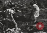 Image of United States Marines Philippines, 1944, second 7 stock footage video 65675076508