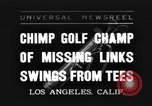 Image of chimpanzee Los Angeles California USA, 1935, second 1 stock footage video 65675076535