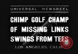 Image of chimpanzee Los Angeles California USA, 1935, second 2 stock footage video 65675076535