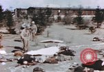 Image of United States soldiers Germany, 1945, second 11 stock footage video 65675076647
