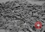 Image of shoe reclamation activities World War 2 European Theater, 1945, second 11 stock footage video 65675076667