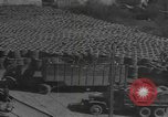 Image of reclamation activities world war 2 European Theater, 1945, second 1 stock footage video 65675076668