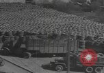 Image of reclamation activities world war 2 European Theater, 1945, second 8 stock footage video 65675076668