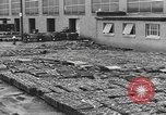 Image of reclamation activities European Theater, 1945, second 2 stock footage video 65675076671