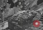 Image of reclamation activities European Theater, 1945, second 8 stock footage video 65675076671