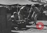 Image of reclamation activities European Theater, 1945, second 2 stock footage video 65675076672