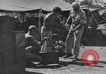 Image of reclamation activities European Theater, 1945, second 4 stock footage video 65675076672