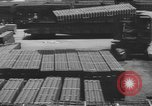 Image of Allied invasion of Europe Europe, 1945, second 9 stock footage video 65675076707